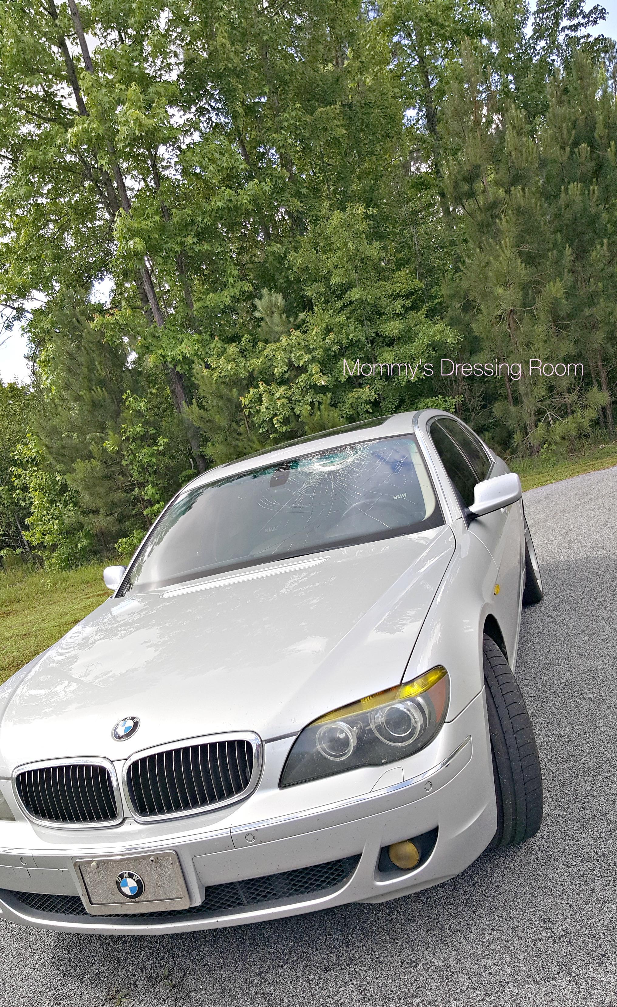 turkey-safelight-country road-bmw-windshield-virginia